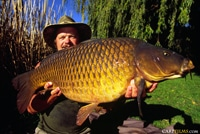 th_Globetrotter-with-carp